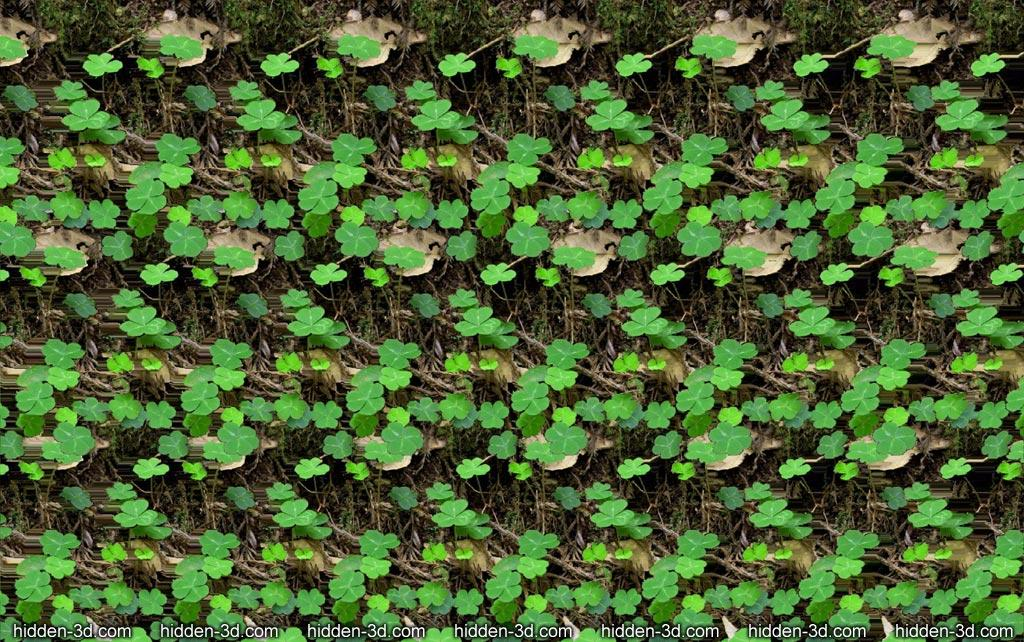 Stereogram by 3Dimka: Saint Patric's Day. Tags: saint patric, holiday, plants, forest, hidden 3D picture (SIRDS)