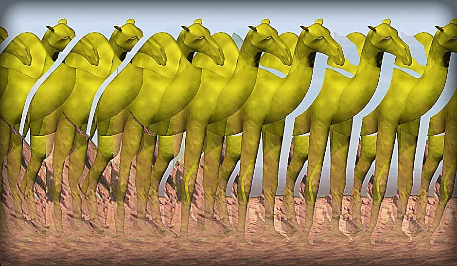 Stereogram by 3Dimka: Camel. Tags: camel, desert, animals,sand, hidden 3D picture (SIRDS)