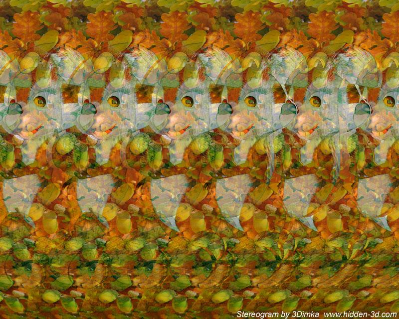 Stereogram by 3Dimka: Nuts for the winter. Tags: squirrel,nuts,animals, hidden 3D picture (SIRDS)