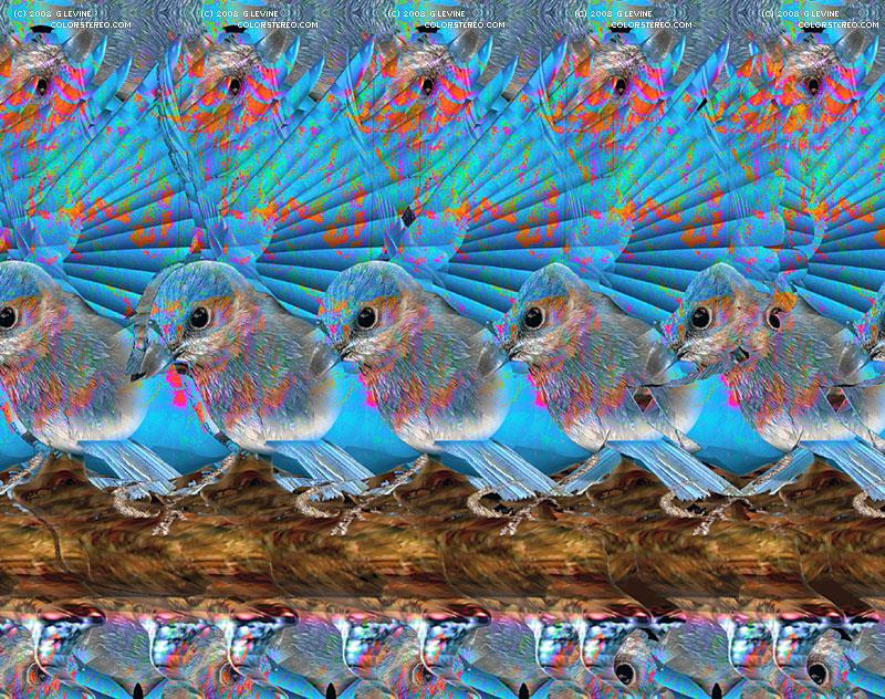 Stereogram by Gene Levine: Bluebird. Tags: , hidden 3D picture (SIRDS)