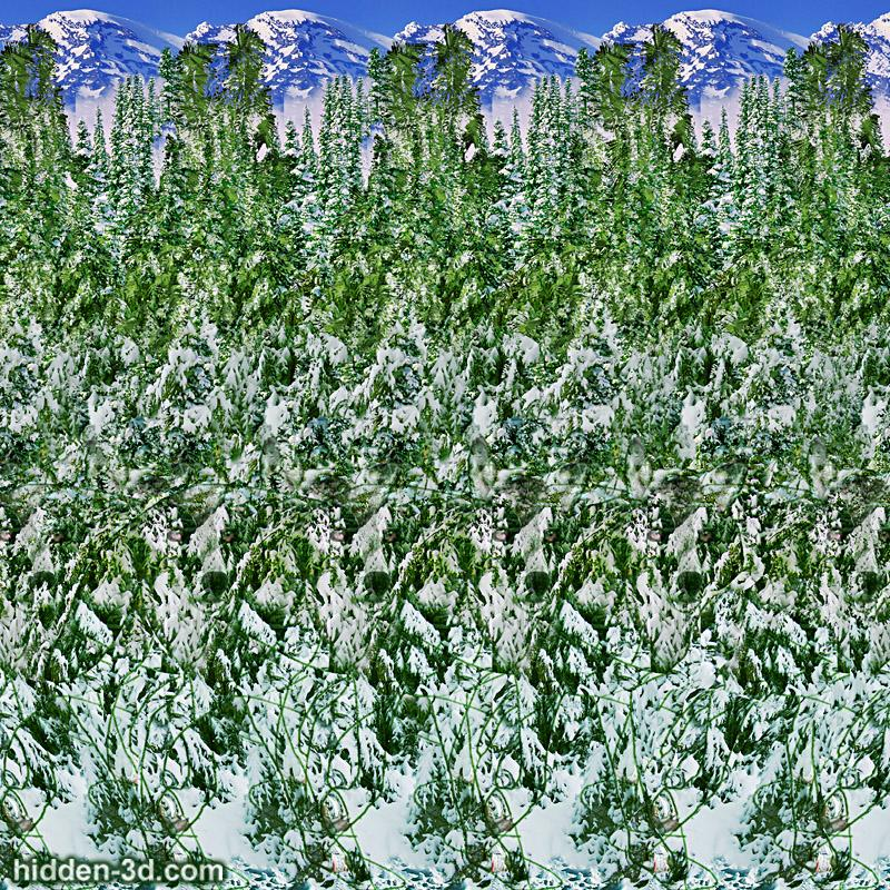 Stereogram by 3Dimka: Snow hunter. Tags: wolf forest trees snow winter, hidden 3D picture (SIRDS)