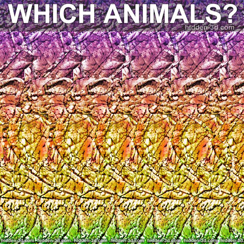 Stereogram by 3Dimka: How many and which animals?. Tags: turtle bunny rabit, hidden 3D picture (SIRDS)